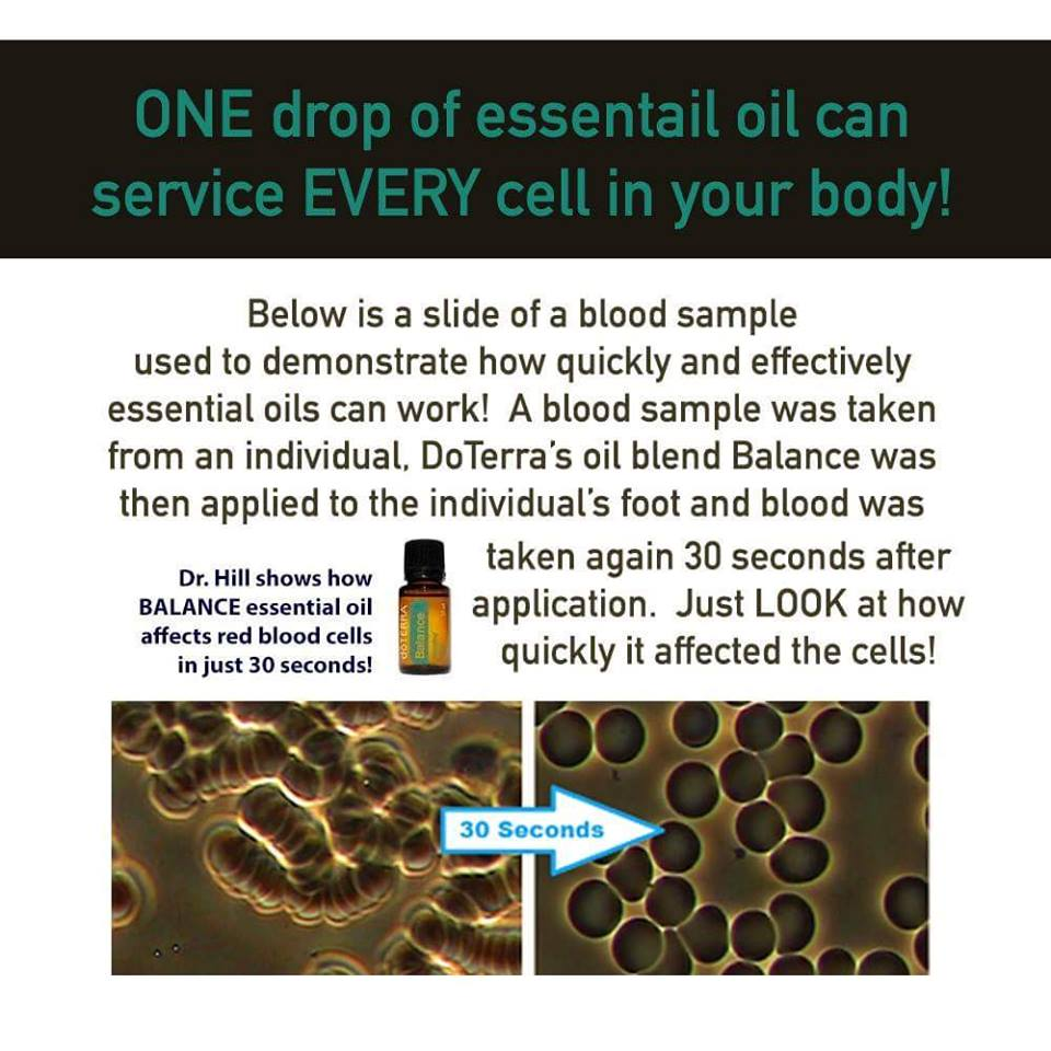 One Drop of Essential Oil